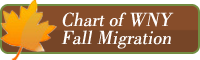 button link to WNY Fall Bird Migration Chart