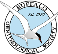 Buffalo Ornithological Society Logo